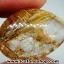 ▽=โปรโมชั่น= พลอยไหมทอง Golden Rutilated Quartz (15ct.) thumbnail 6