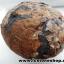 หินเต่าหินมงคลจากฝั่งลาว (2.4kg) thumbnail 4