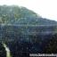 ▽ลาพิส ลาซูลี่ Lapis Lazuli ก้อนธรรมชาติ (304g) thumbnail 4