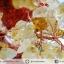 [โปรโมชั่น] ต้นไม้มงคล ซิทริน (Citrine) (สูง 30 cm) thumbnail 5