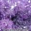 ▽โพรงอเมทิสต์ ( Amethyst Geode) ตั้งโต๊ะ (17.66KG) thumbnail 11