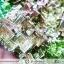 บิสมัท Bismuth รูปแบบแร่ที่มนุษย์ทำขึ้น(149g) thumbnail 13