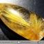 =โปรโมชั่น= พลอยไหมทอง Golden Rutilated Quartz (47.93 ct.) thumbnail 2