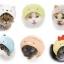 necos - Sumikko Gurashi 8Pack BOX(Pre-order) thumbnail 1