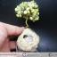 ▽ต้นไม้มงคล หินเซอร์เพนไทน์ SERPENTINE-ฐานควอตซ์ ใช้เสริมฮวงจุ้ย โต๊ะทำงาน (188g) thumbnail 1