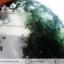 ▽มอสอาเกต (Moss gate) ขัดมัน (19g) thumbnail 6