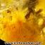▽=โปรโมชั่น= พลอยไหมทอง Golden Rutilated Quartz (59.50ct.) thumbnail 3
