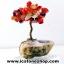 ▽ต้นไม้มงคล หินคาร์เนเลี่ยน-ฐานควอตซ์ ใช้เสริมฮวงจุ้ย โต๊ะทำงาน (150g) thumbnail 4