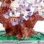 ▽ต้นไม้มงคล อเมทิสต์ Amethyst (สูง 32 cm) thumbnail 6