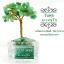 [โปรโมชั่น]*ต้นไม้หินมงคล หินแท้ ตั้งโต๊ะ ขนาดย่อม เสริมฮวงจุ้ย โปรโมชั่นต้นละ 500 บาท 3 ต้นแถม 1 ต้น thumbnail 9
