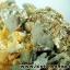 กลุ่มแร่แอนไฮไดรท์ (Anhydrite with Quartz on Calcite) (4.2kg) thumbnail 10