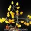 ▽ต้นไม้ อำพันบอลติก (Brown) Genuine Baltic Amber thumbnail 2
