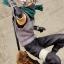 G.E.M. Series - Naruto Shippuden: Kakashi Hatake ver.Anbu Complete Figure(Limited) thumbnail 12