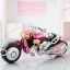 "Armor Girls Project - Super Sonico with Super Bike Robot (10th Anniversary ver.) ""NITRO SUPER SONIC (NSS)""(Pre-order) thumbnail 13"