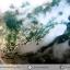 ▽มอสอาเกต (Moss gate) ขัดมัน (18g) thumbnail 4