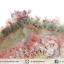 พลอยสวนมอสอาเกต Garden Moss Agate (19.65ct.) thumbnail 5