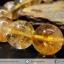 สร้อยหิน ซิทริน (Citrine) 10mm thumbnail 3