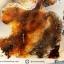 เดนไดทริก อาเกต Dendritic Agateขัดมันจากมาดากัสการ์ (51g) thumbnail 3