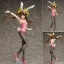 B-STYLE - Infinite Stratos: Huang Lingyin Bunny Ver. 1/4 Complete Figure(Pre-order) thumbnail 1