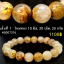 ▽[โปรโมชั่น] สร้อยข้อมือ ไหมทอง (Rutilated Quartz ) 8-10.5 mm. (06-09-17) thumbnail 2