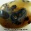 เดนไดทริก อาเกต Dendritic Agateขัดมันจากมาดากัสการ์ (93g) thumbnail 1