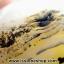 เดนไดทริก อาเกต Dendritic Agateขัดมันจากมาดากัสการ์ (149g) thumbnail 3