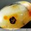 เดนไดทริก อาเกต Dendritic Agateขัดมันจากมาดากัสการ์ (43g) thumbnail 7