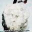 ▽ต้นไม้มงคลปะการังแดง (ย้อม) ฐานอะโพรพิไลท์ ใช้เสริมฮวงจุ้ย โต๊ะทำงาน (588g) thumbnail 10