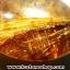 ▽=โปรโมชั่น= พลอยไหมทอง Golden Rutilated Quartz (15ct.) thumbnail 2
