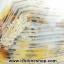 เดนไดทริก อาเกต Dendritic Agateขัดมันจากมาดากัสการ์ (521g) thumbnail 9