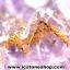 ▽โพรงอเมทิสต์ คาค็อกซิไนท์ (Cacoxenite in Amethyst ) 20.3 KG thumbnail 15