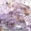 ▽โพรงอเมทิสต์ คาค็อกซิไนท์ (Cacoxenite in Amethyst ) 20.3 KG thumbnail 9