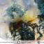 ▽มอสอาเกต (Moss gate) ขัดมัน (15g) thumbnail 7