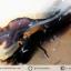 เดนไดทริก อาเกต Dendritic Agateขัดมันจากมาดากัสการ์ (56g) thumbnail 2