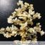 ต้นไม้มงคล หินไหมทอง ฐานควอตซ์สีน้ำนม ใช้เสริมฮวงจุ้ย โต๊ะทำงาน (1.3Kg) thumbnail 5