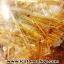 ▽=โปรโมชั่น= พลอยไหมทอง Golden Rutilated Quartz (22.5ct.) thumbnail 4