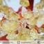 [โปรโมชั่น] ต้นไม้มงคล ซิทริน (Citrine) (สูง 30 cm) thumbnail 3