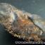 ▽แร่ภูเขาควาย หินมงคลจากภูเขาควาย (30g) thumbnail 2