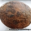 หินเต่าหินมงคลจากฝั่งลาว (2.4kg) thumbnail 5