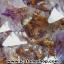 โพรงอเมทิสต์-คาค็อกซิไนท์ ขนาดใหญ่ ร่ำรวย มั่งคั่ง เสริมบารมี ( Amethyst-Cacoxenite Geode) 194KG thumbnail 8