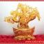 ▽ต้มไม้มงคลซิทริน Citrine เหรียญจีนทอง (size L) thumbnail 1