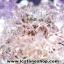 ▽โพรงอเมทิสต์ คาค็อกซิไนท์ (Cacoxenite in Amethyst ) 20.3 KG thumbnail 14