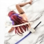 FAIRY TAIL - Erza Scarlet White Cat Gravure_Style 1/6 Complete Figure(Pre-order) thumbnail 12