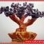 ▽ต้นไม้มงคล อเมทิสต์ Amethyst ถุงทอง (size S) thumbnail 4