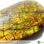 พลอยแอมโมไลต์ (Ammolite) อัญมณีโลกล้านปีสุดหายาก (3.07ct.) thumbnail 4