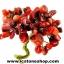 ▽ต้นไม้มงคล หินปะการังแดง(ชนิดย้อม)-ฐานควอตซ์-ฐานควอตซ์ ใช้เสริมฮวงจุ้ย โต๊ะทำงาน (166g) thumbnail 2