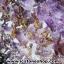 โพรงอเมทิสต์-คาค็อกซิไนท์ ขนาดใหญ่ ร่ำรวย มั่งคั่ง เสริมบารมี ( Amethyst-Cacoxenite Geode) 194KG thumbnail 5