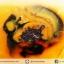 เดนไดทริก อาเกต Dendritic Agateขัดมันจากมาดากัสการ์ (43g) thumbnail 3