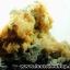 กลุ่มแร่แอนไฮไดรท์ (Anhydrite with Quartz on Calcite) (4.2kg) thumbnail 28