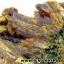▽ผลึกแร่กัมมะถัน Sulphur (187g) thumbnail 6